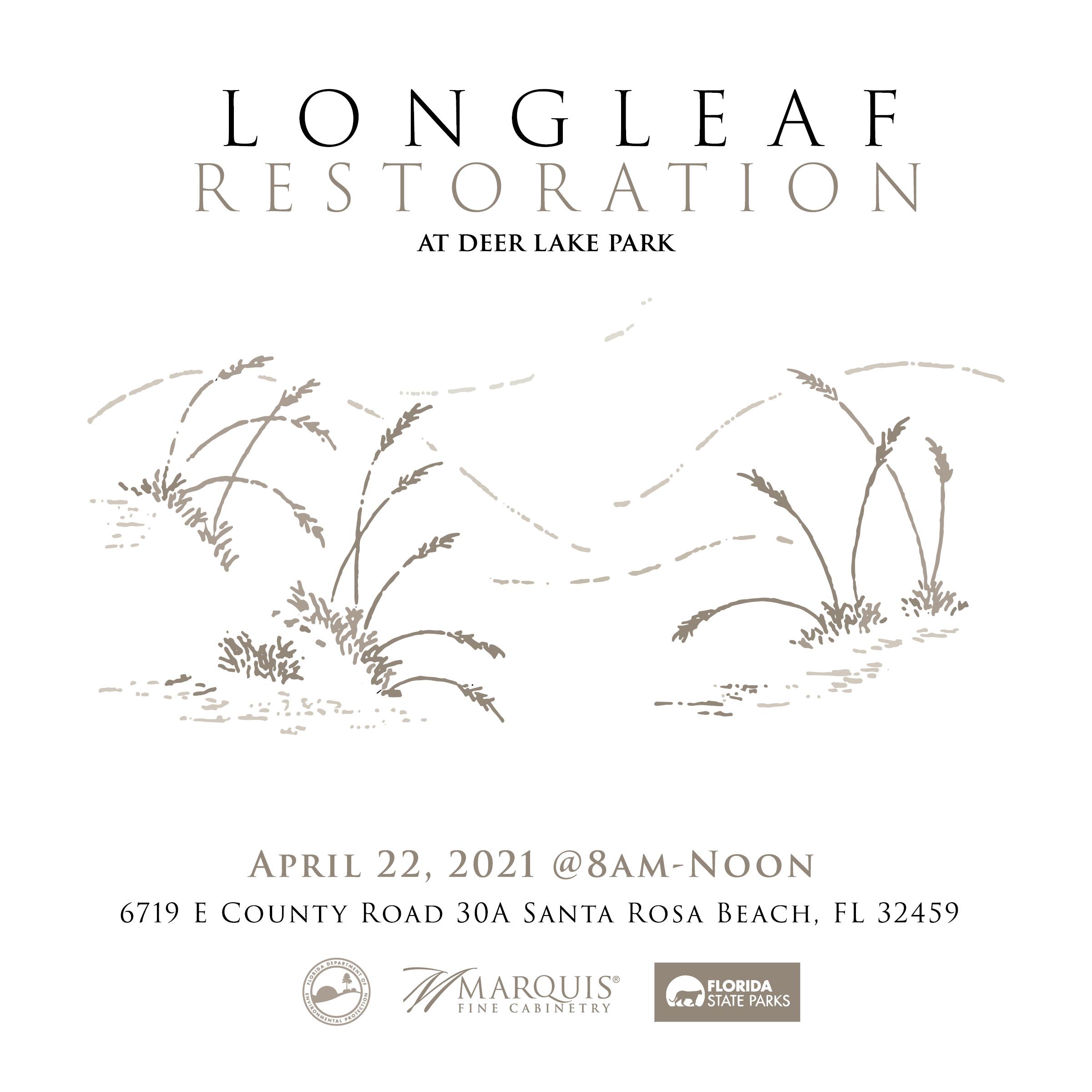 Earth Day 2021 longleaf pine restoration project
