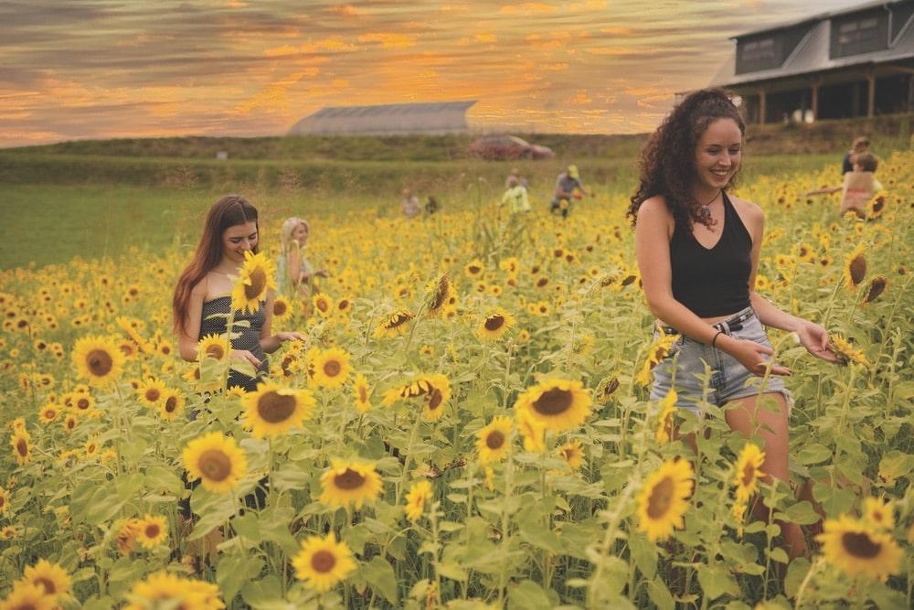 Olivette Riverside Community and Farm