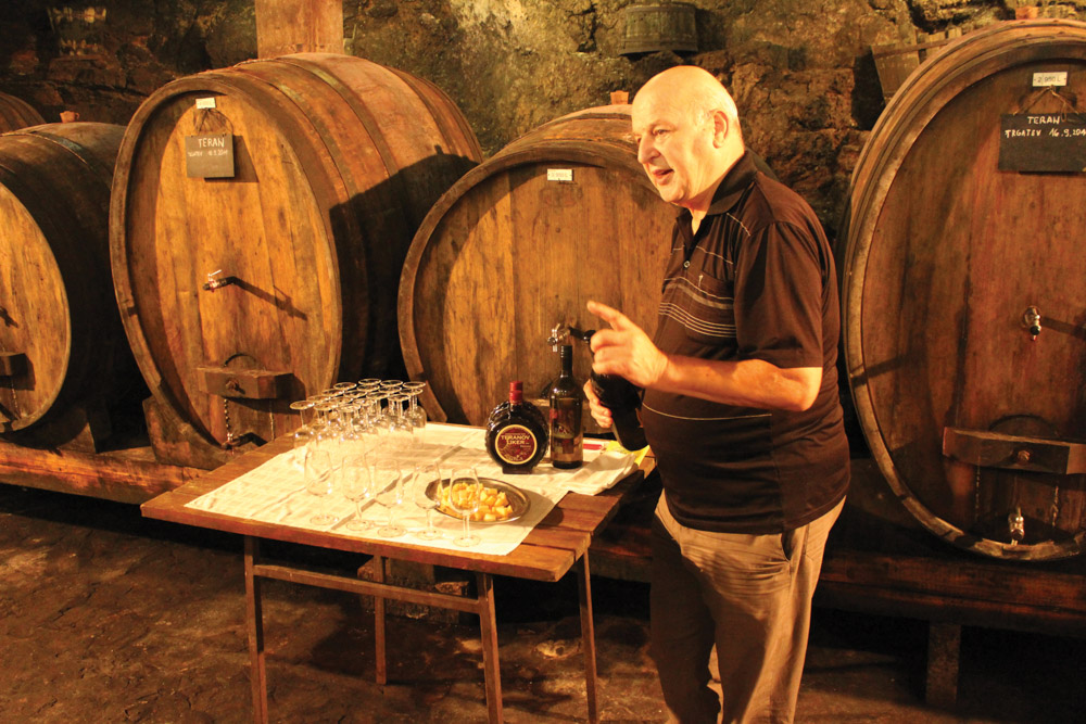 Wine tasting hosted by Grča's winemaker in his cellar