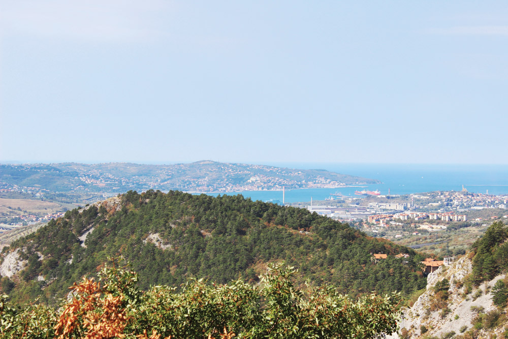 View of Trieste, Italy, and the Adriatic Coast from the Alpe Adria Trail
