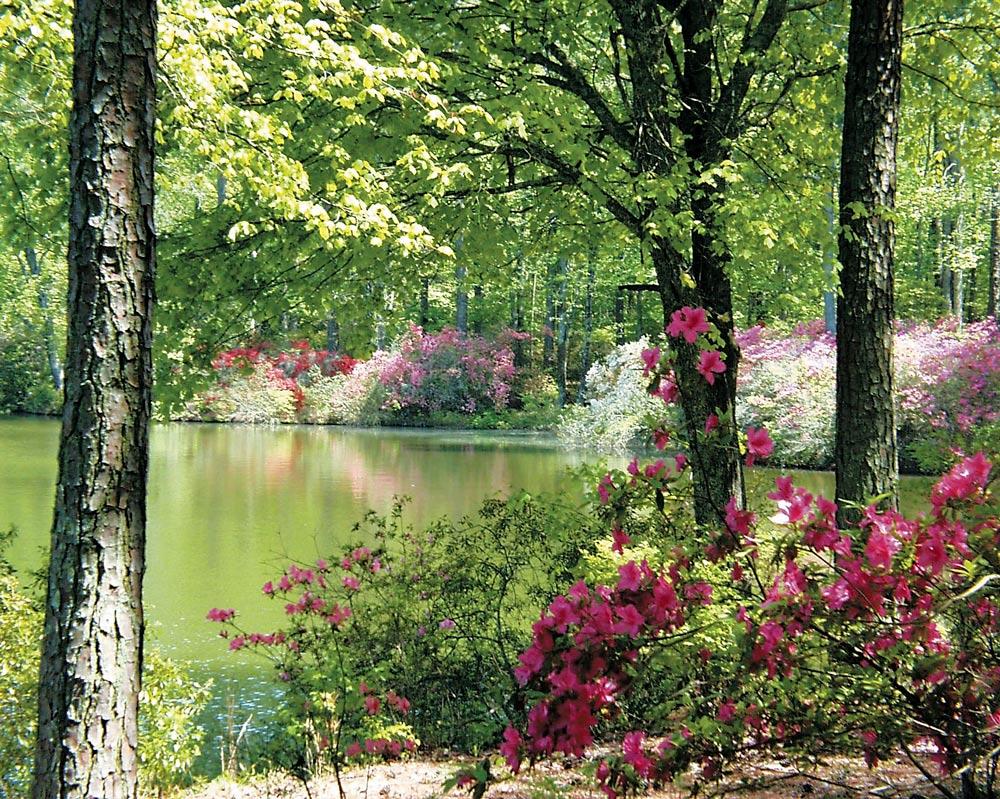 VIE Magazine Callaway Gardens Resorts Pine Mountain Georgia's Appalachian Foothills