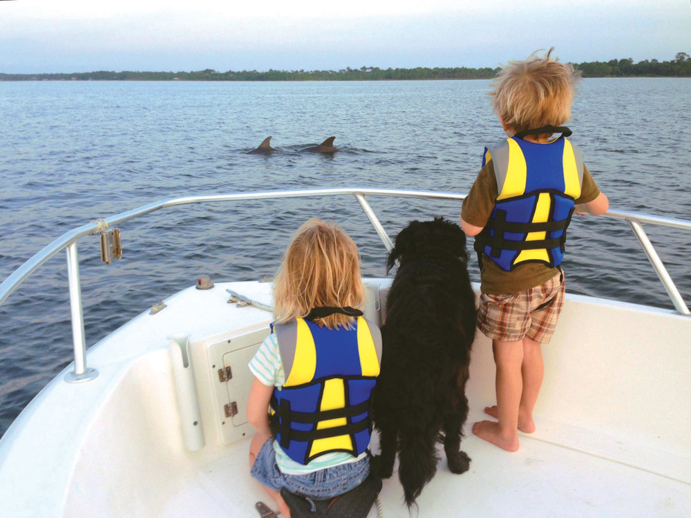 Family spots some dolphins surfacing in the Choctawhatchee Bay