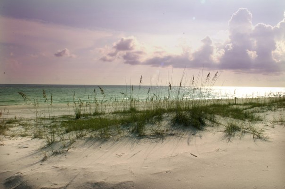 photography contest vie magazine beach sand dunes grass ocean clouds