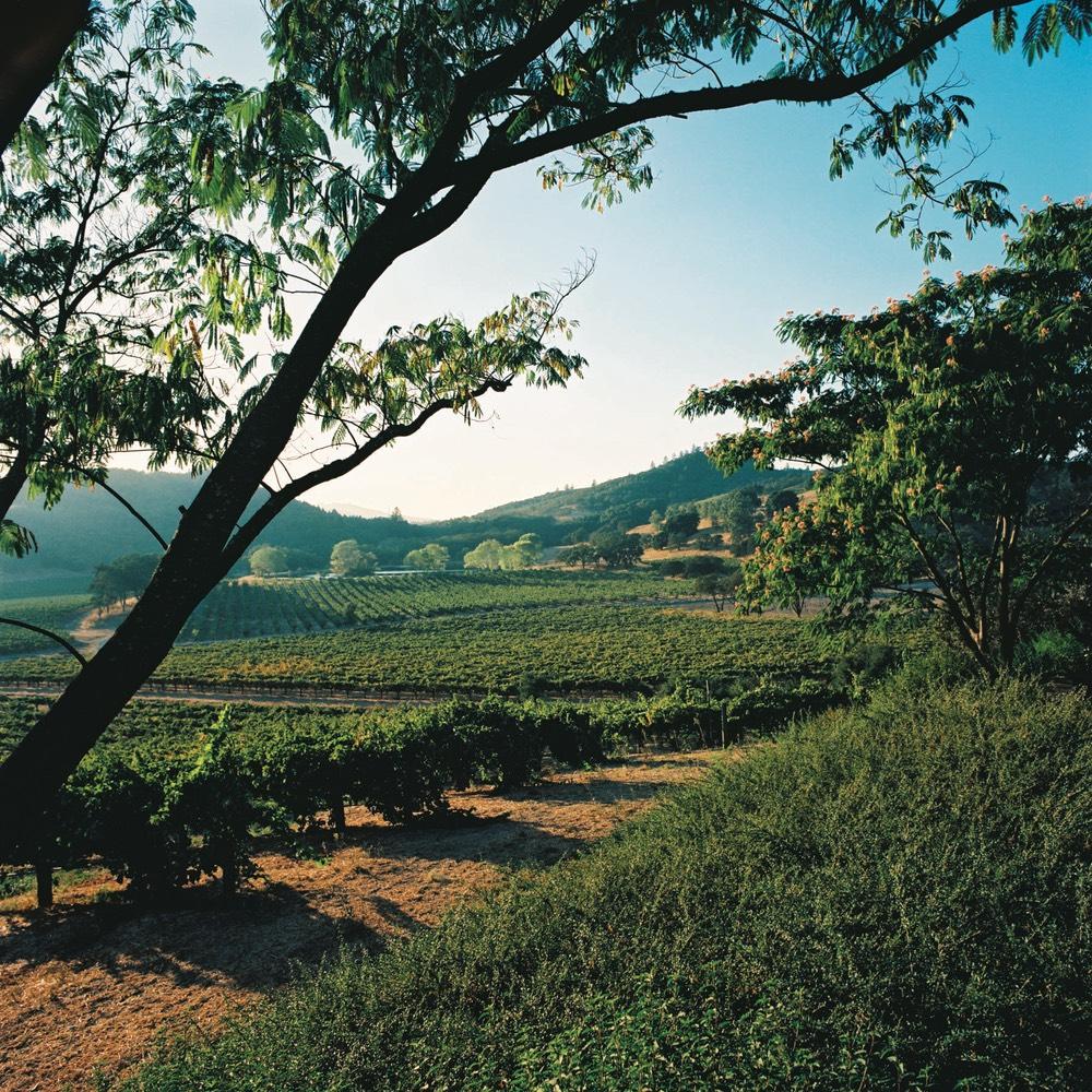 Joseph Phelps Vineyards vie magazine wine country