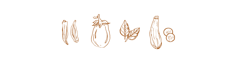 Fresh Fall Ingredients from the Garden Illustrations line drawing delicious