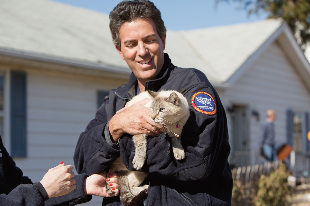 The HSUS President and CEO Wayne Pacelle is seen here with the rescued cat