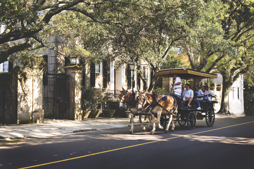 Charleston, South Carolina; carriage tour