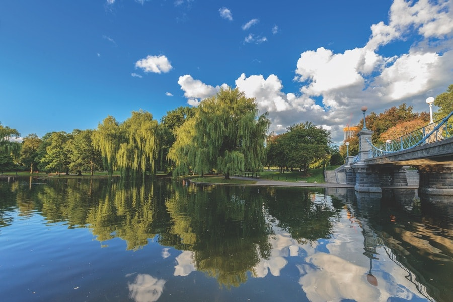 Overlook of the water at the Boston Public Garden. The Sophisticate Issue VIE Magazine 2017