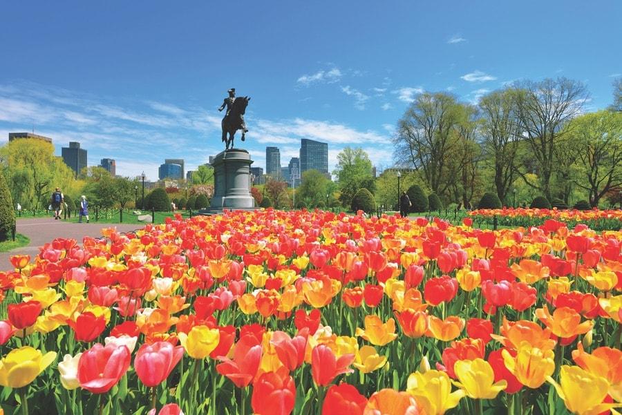 A grand statue of George Washington presides over the Boston Public Garden. VIE Magazine. The Sophisticate Issue