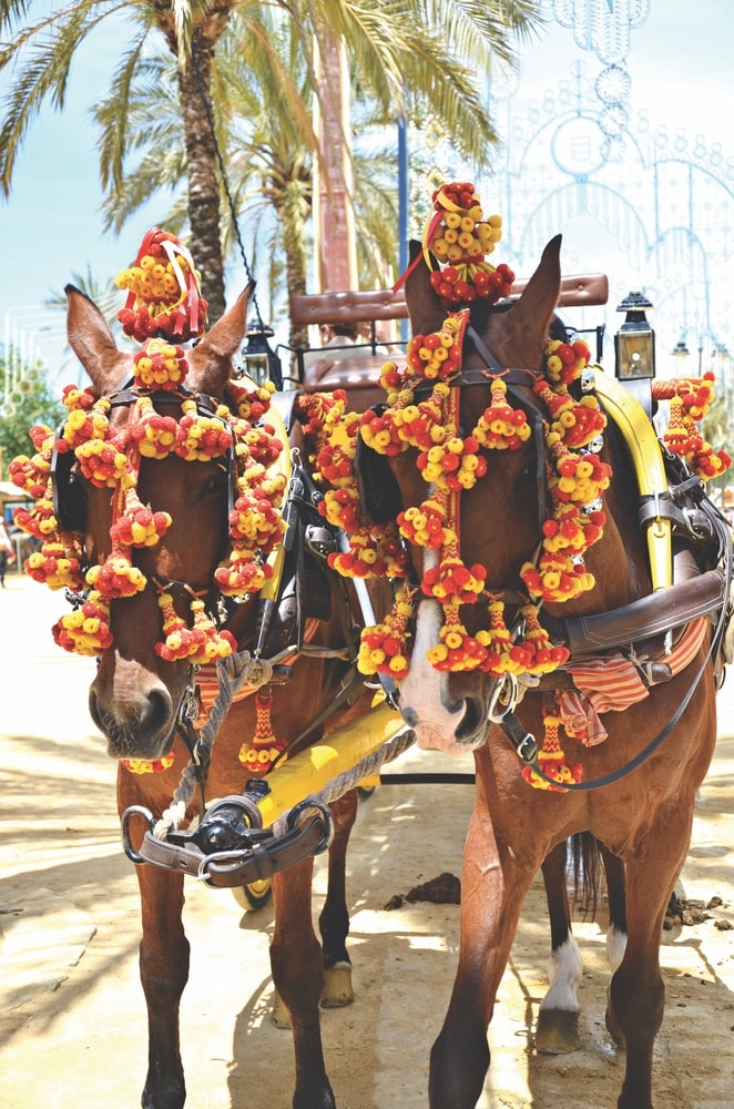 Horses bedecked with flowers and pulling a colorful cart for the horse fair in Jerez de la Frontera